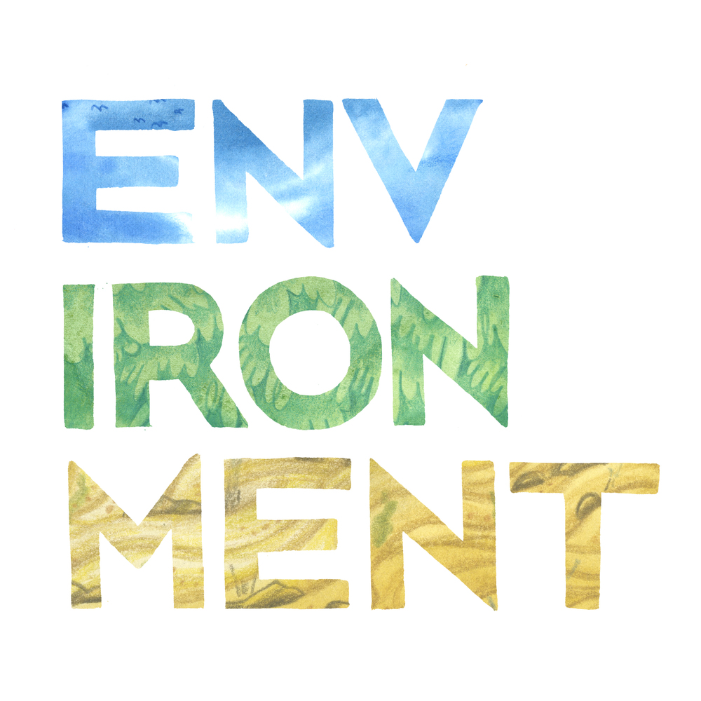 Environment_flat.jpg