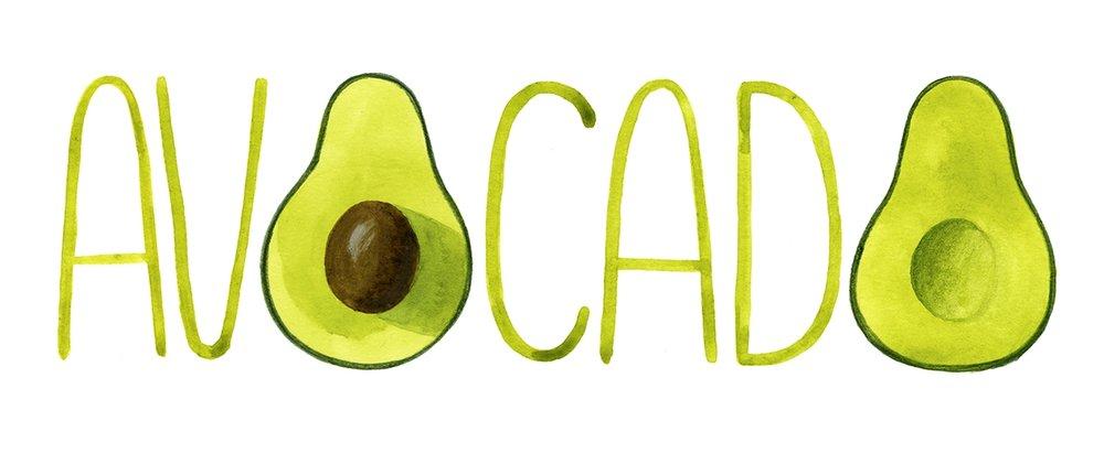 avocado_web_portfolio_220.jpg