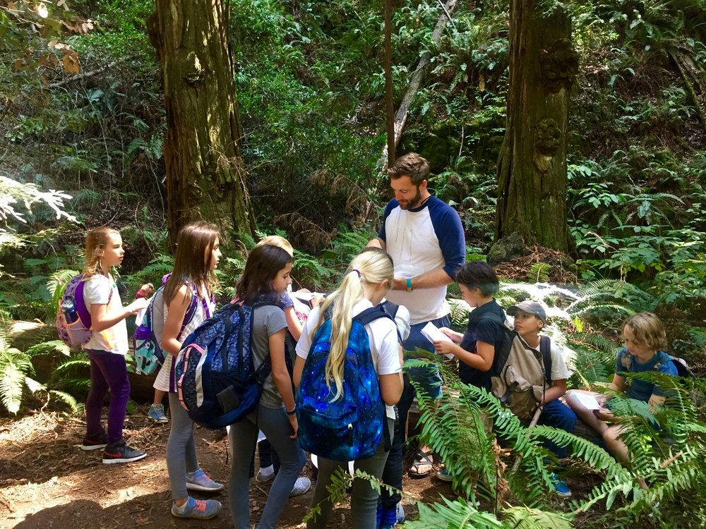 In science class, 5th grade students study botany—bacteria, algae, fungi, lichen, mosses, ferns, grasses, and conifers—with weekly hands-on learning in the field.