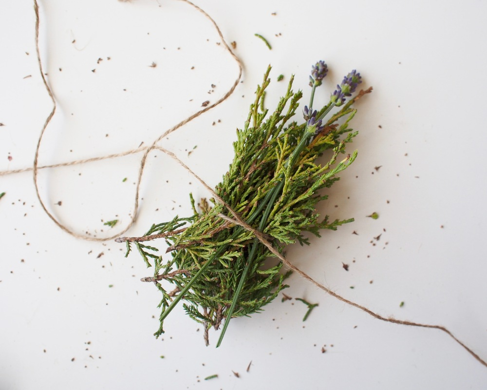 juniper + lavender