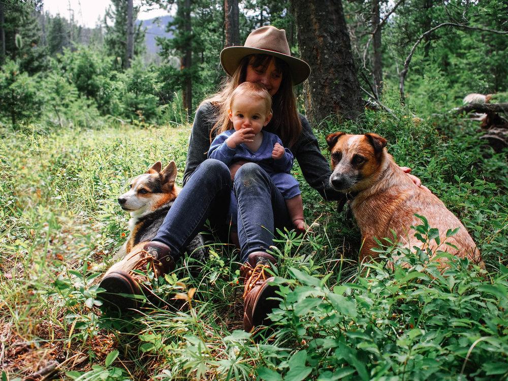 Montana Summer Huckleberry Picking