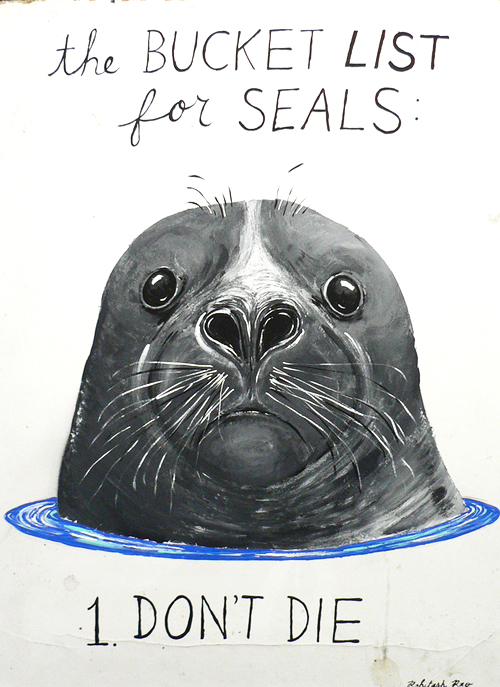 THE BUCKET LIST FOR SEALS