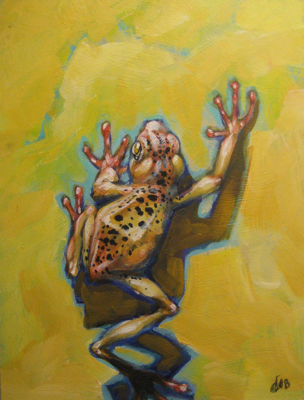 yellow frog.jpg