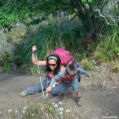 HikingBoots2.jpg.jpg