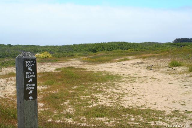 Trailmarker.jpg.jpg