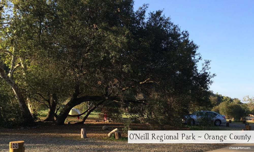 Spring Time Camping In The Oc O Neill Regional Park