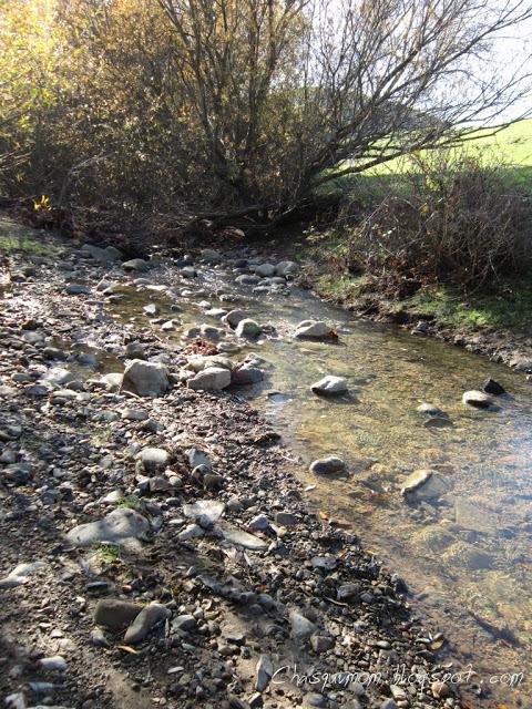 BeFunky_Garin+Dry+Creek+008.jpg