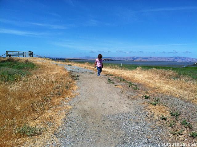 Littlehiker.jpg.jpg