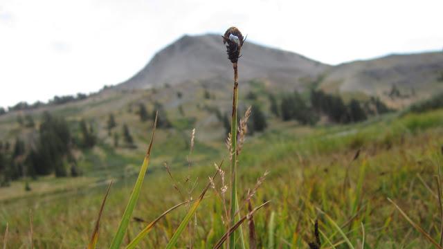 Highland+Lakes+Camping+2012+058.JPG