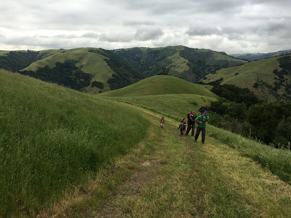 Vargas Plateau Regional Park ~ Upper Ranch Trail