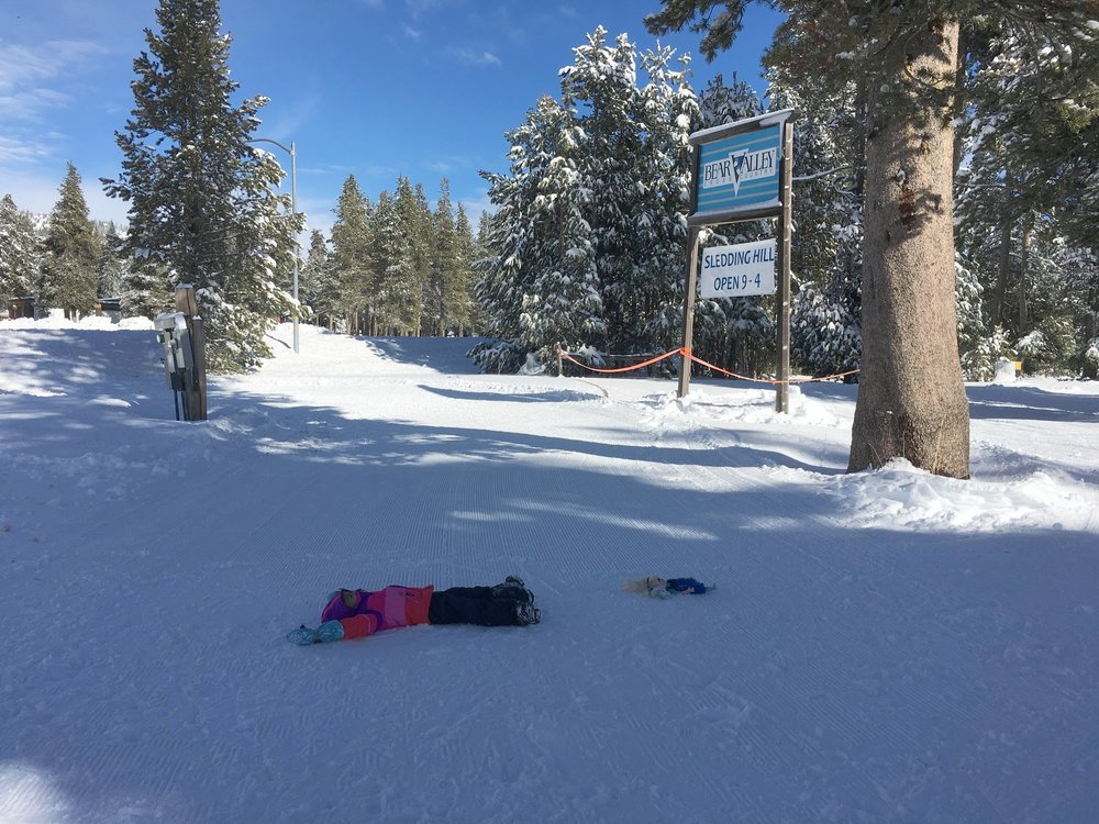 My daughter and Elsa decided to do snow angels before xc-skiing.