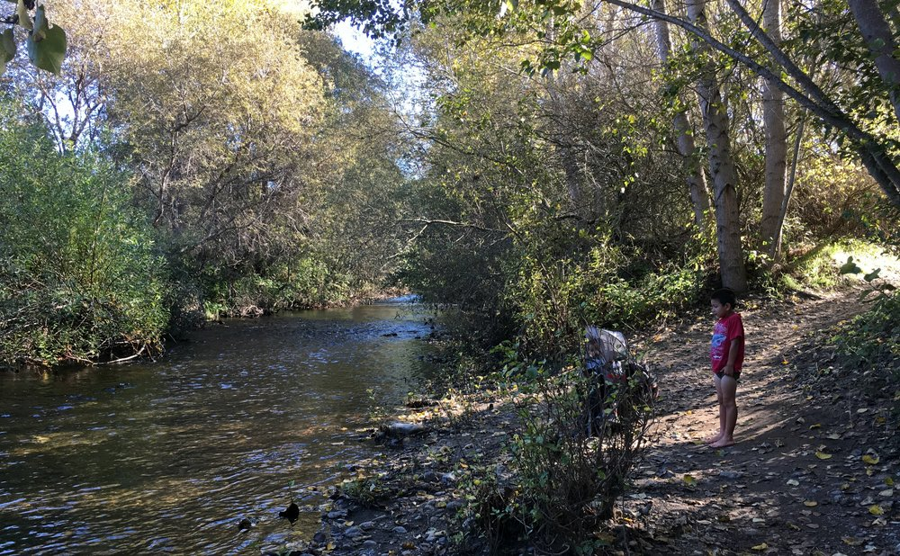 Big Sur River Crossing