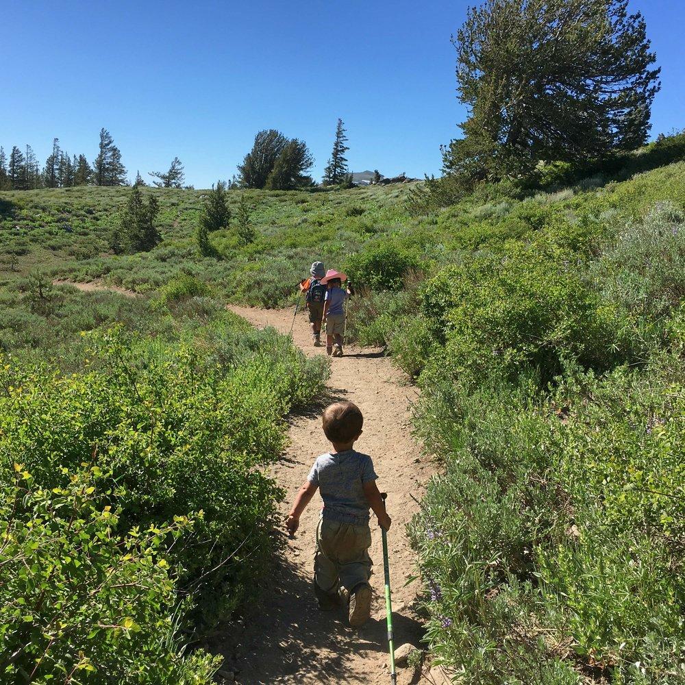 Caminata familiar en el Pacific Crest Trail