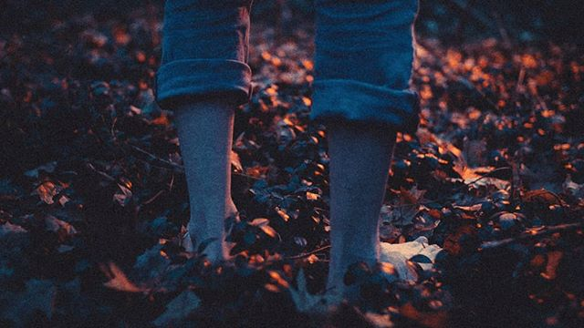 This is cool but sad - an outtake frame from a shot that just couldn't make it into the music video I've been working on with @wovecollective.  Poor little guy just couldn't make the cut. . . After shooting for the first part of Jan. and colouring on and off for the first part of Feb. I'm leaving the talented Wove dudes to put the final touches on the video while I fly to coop to South America. . . The final piece comes out next week, ill try and post about it if I'm not too busy posing cool bugs or something from Ecuador.  @wovecollective will defenetly post about it if you're interested in seeing more. ✌️✌️✌️ . . . . #cinematography #wip #musicvideo #legs #cool
