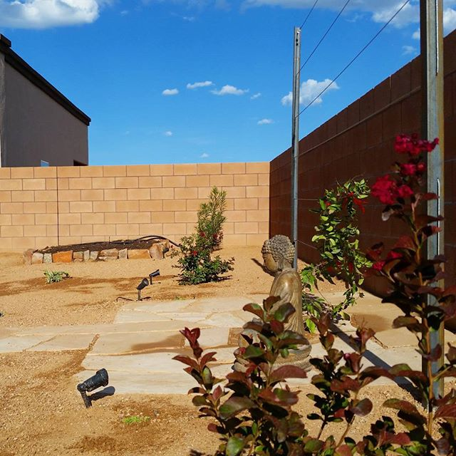"""A look at another completed #job on the west side of #Albuquerque These metal trellises have a rich #rust #patina lending an aged look to this #landscape The #plant in the foreground with deep red #flowers is the""""dynamite"""" cultivar of a shrub crape myrtle. In the background you can see where a small #natural #stone wall was dry stacked together for a future vegetable #garden bed. #southwesthorticulture #botany #gardening #flagstone #flora #botany #nature #southwest #horticulture #Albuquerque #newmexico #landscapedesign #landscape #landscapes #landscaping #nativeplants #xeriscape #stone #irrigation #hardscape #trellis #vine #crapemyrtle"""