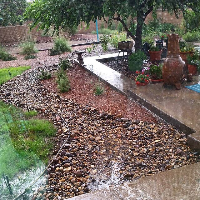 A good  #landscape  directs  #rain   #water  away from the foundation of any structures. A  #professional  landscape then distributes that water throughout the landscape so that  #plants  can take advantage of seasonal down pours like the one we had in  #Albuquerque  today!  #southwesthorticulture   #landscape  #landscapedesign   #waterharvesting  #monsoon   #swale