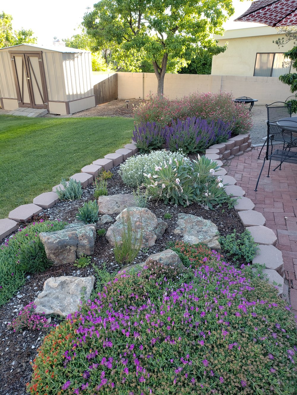 Happy mother's day! This is a picture of my mommy's garden that we designed and built last year. It still has a long way to go, but looks nice already.  #southwesthorticulture #horticulture #landscapes #landscaping #landscapedesign #nativeplants #xeriscaping #xeriscape #waterconservation #gardening #albuquerque #newmexico