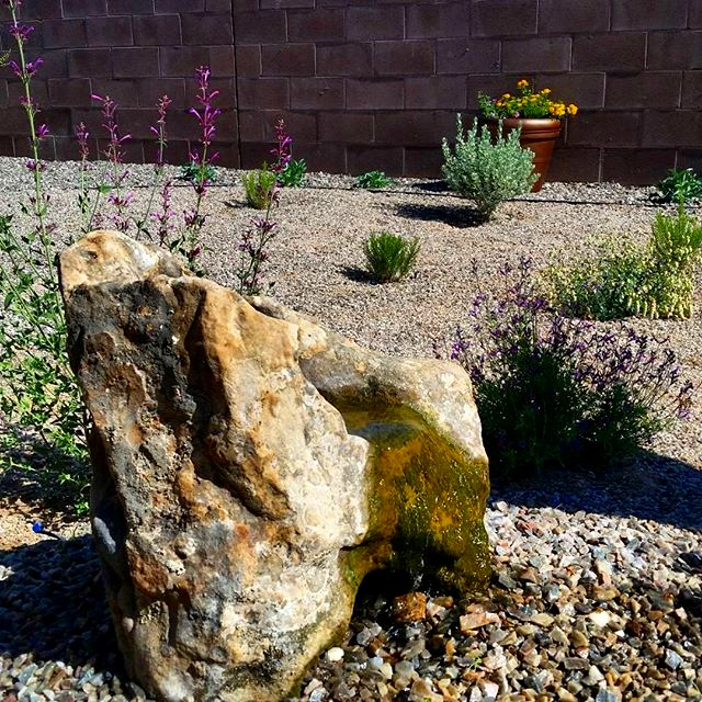 A water feature like this natural, bubbling  #stone suggests a cool, welcoming space in the  #garden and  #landscape . This one is fully automatic and does not require filling by hand. The rock was selected, drilled and installed by  @louis_wilcox_art   #landscaping  #landscapedesign