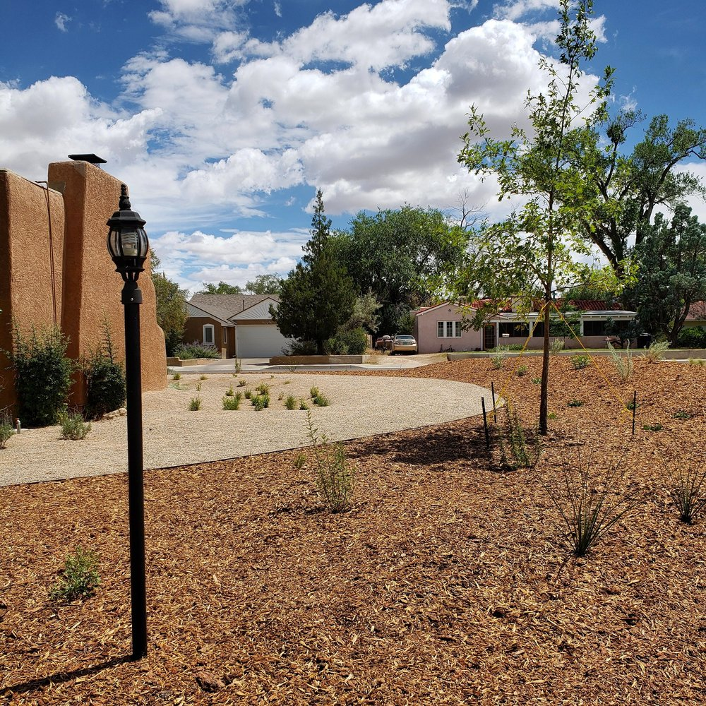 A recently completed xeriscape conversion in the Ridgecrest area of town. The property has so much character and sits on a corner lot with a far above average square footage in what was originally the lawn area. For as much water and maintenance this lawn must have required, it wasn't really a usable space. There are a couple mature elm trees but otherwise no shade, just vast, uniform, exposed lawn that wasn't particularly inviting. Now it's home you just about 300 plants with an array of color, texture and size that will make the space so much more interesting as well as provide habitat for birds and pollinators as it matures. Excited to see this one develop.  #southwesthorticulture #horticulture #landscapes #landscaping #landscapedesign #nativeplants #xeriscaping #xeriscape #waterconservation #gardening #albuquerque #newmexico