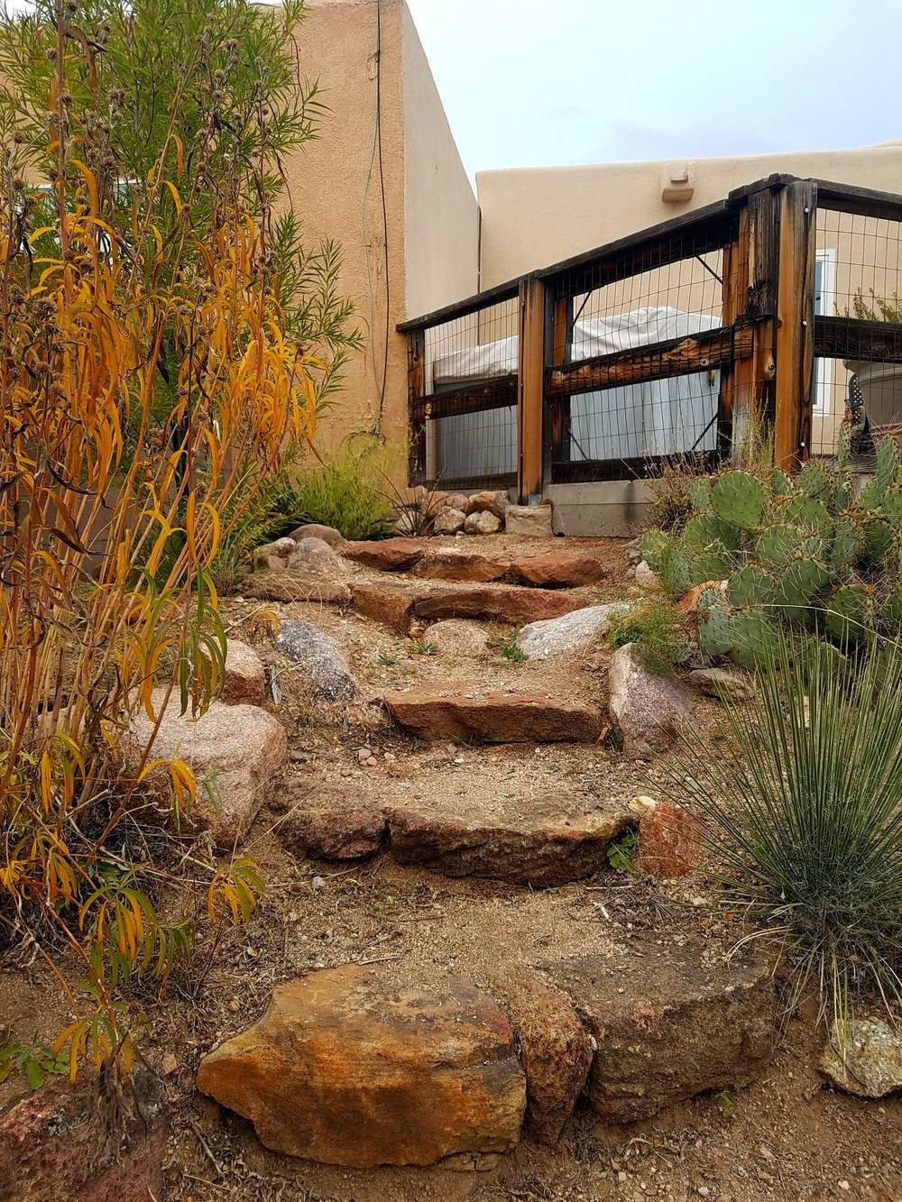 southwesthorticultureFall is my favorite time to just check on some of our previous installs. These natural stone stairs in this client's native landscape in the foothills are still looking great and the #plants are filling in nicely as well.  #southwesthorticulture #xeriscaping #xeriscape #landscaping #landscapes #Albuquerque #newmexico