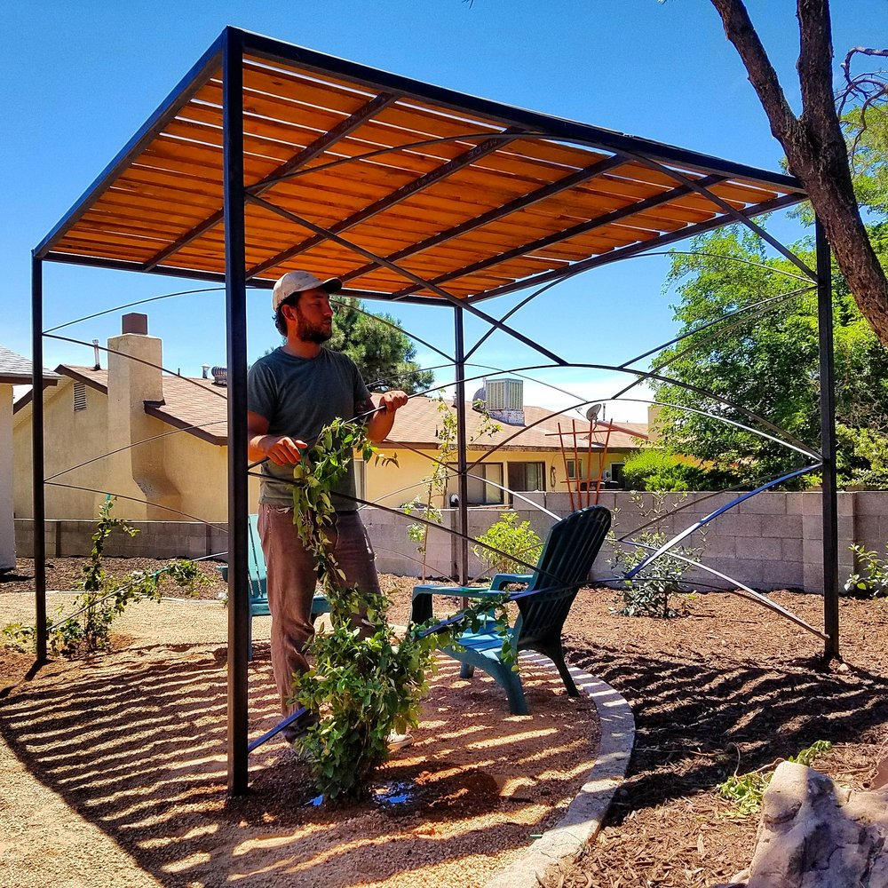 Another look at the #weldedsteel #pergola built by our install foreman @louis_wilcox_art. In the coming years, the Japanese #honeysuckle #vines will cover the sides and top of the structure, adding to the cool, inviting atmosphere and perfuming the air in the #spring. #southwesthorticulture #landscape #landscapes #landscaping #design #Albuquerque #newmexico