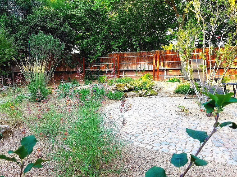 This #landscape has been in since July and has already grown considerably. Despite the #lushappearance, this client's water bill has been reduced by 55% by eliminating most of the #lawn that was in this area previously. #southwesthorticulture #landscaping #landscapedesign #xeriscape #albuquerque #newmexico #nativeplants