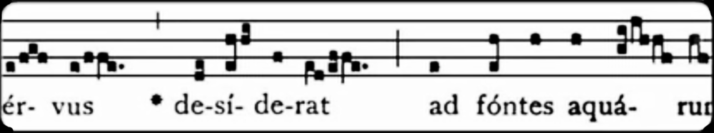 Click the image to access the video this was taken, which shows that this is a consistent standard of chant notation.