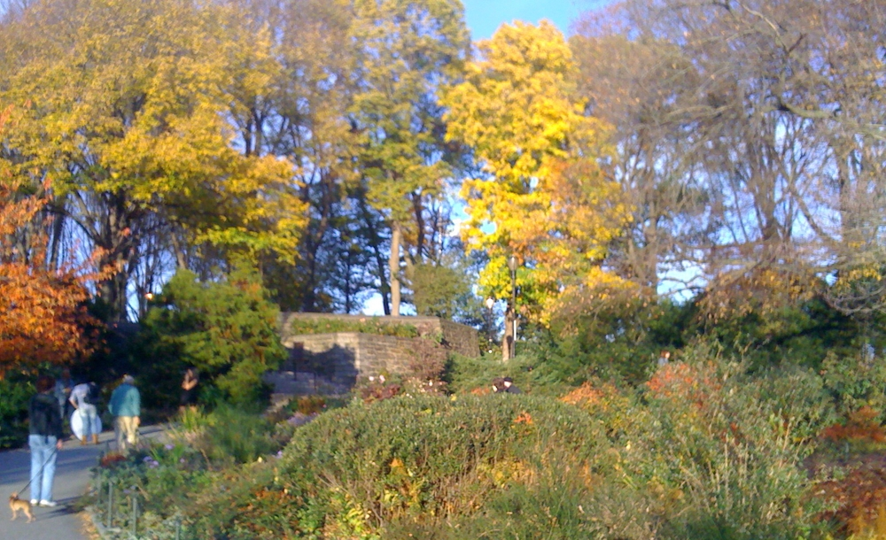 Fort Tryon Park......all this beauty is just across the street from my apartment in Washington Heights, located in Upper Manhattan.