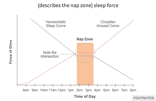 nap-zone