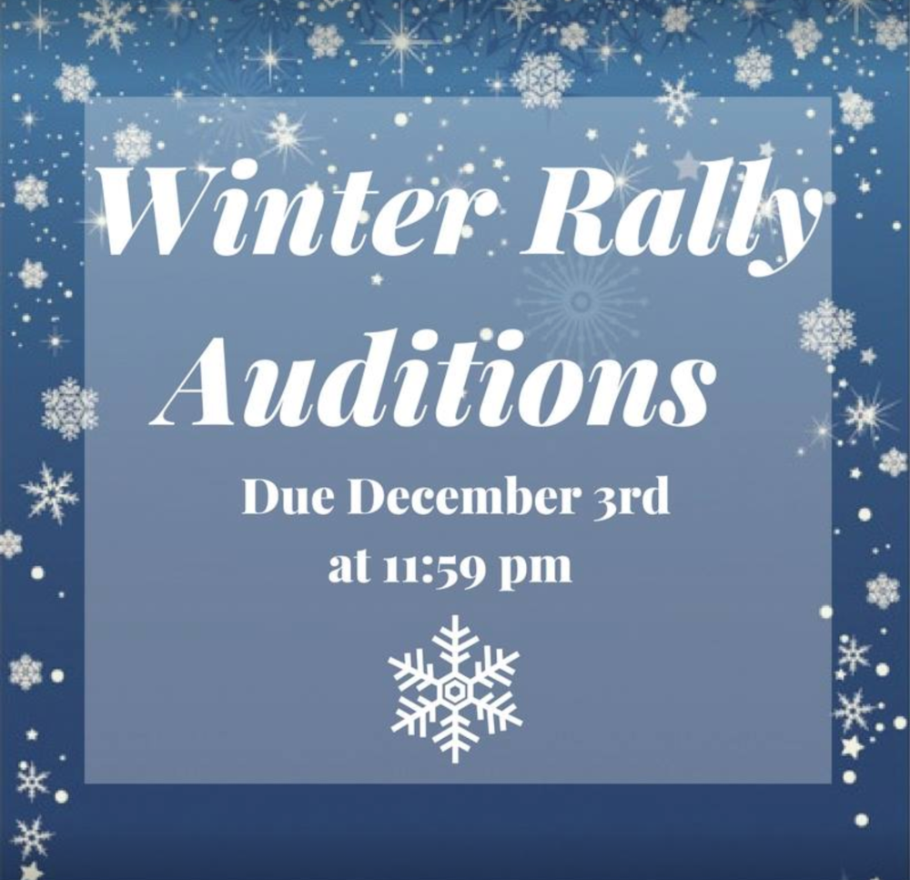 Winter Rally auditions 2017.png