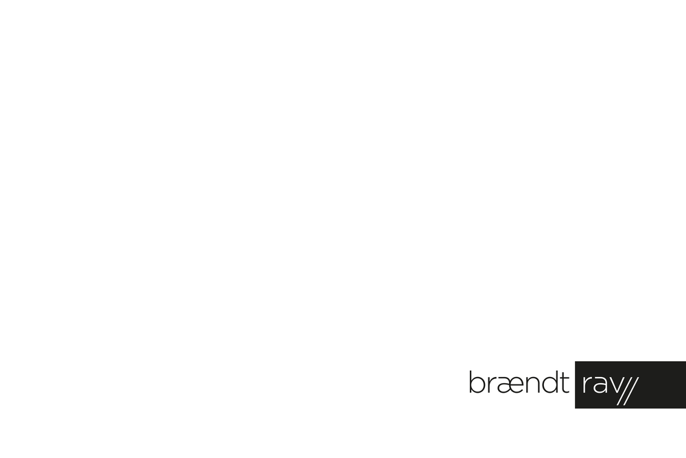 Brandy pg 1.png