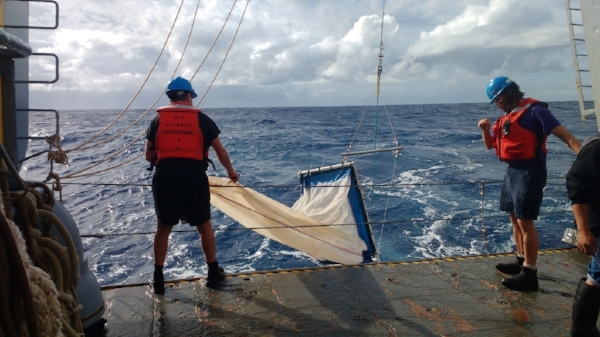 Deploying a zooplankton tow