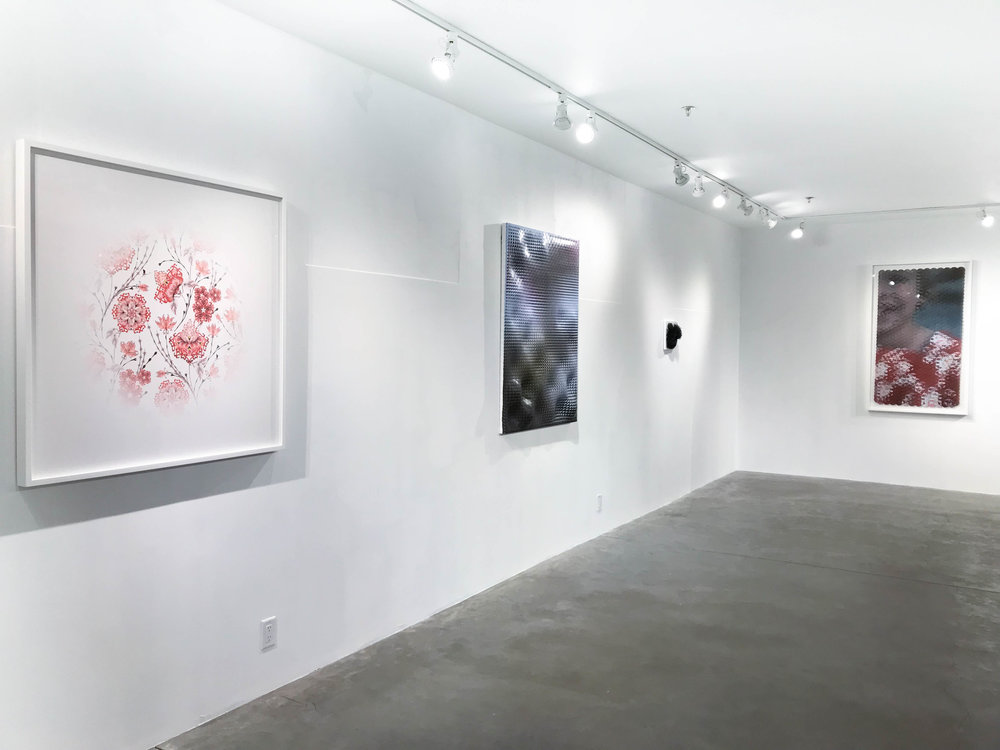 Installation View: The Awakening, November 2017