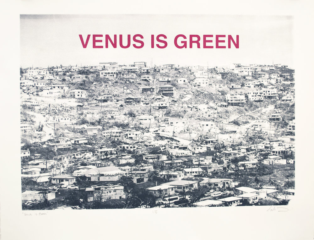 Venus is Green, Sarah Friedman