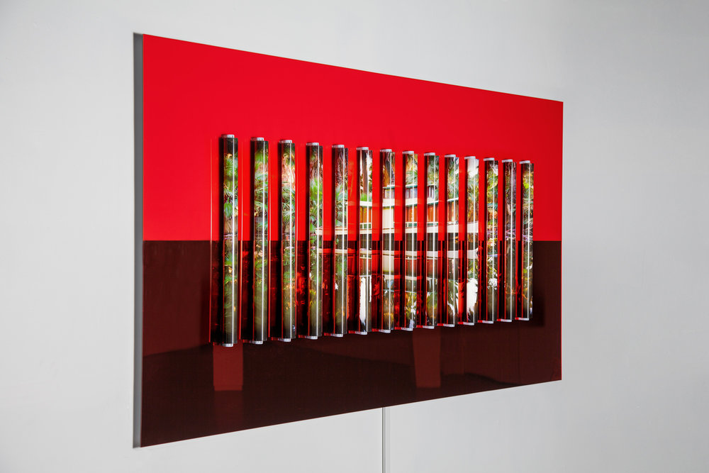 Clint Baclawski,    Oasis , 2017. Glossy red Plexiglas and red mirrored Plexiglas on Dibond, archival pigment backlight prints, clear polycarbonate tubes, 2′ LED bulbs 44 x 80 x 3 in.