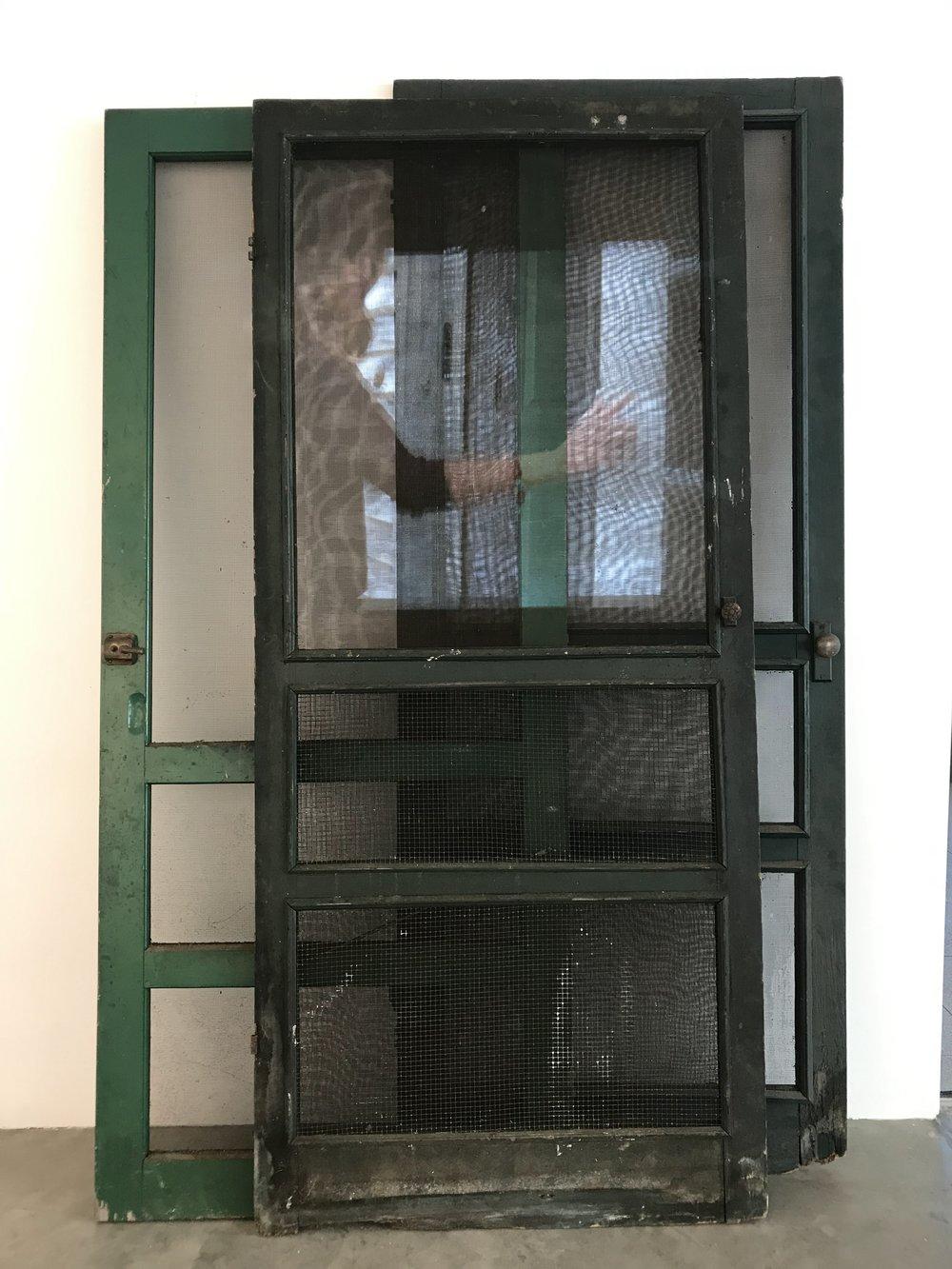 Mom Moves Through the Sliding Door, Vanessa Fischer