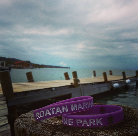 Roatan Marine Park yearly bracelet