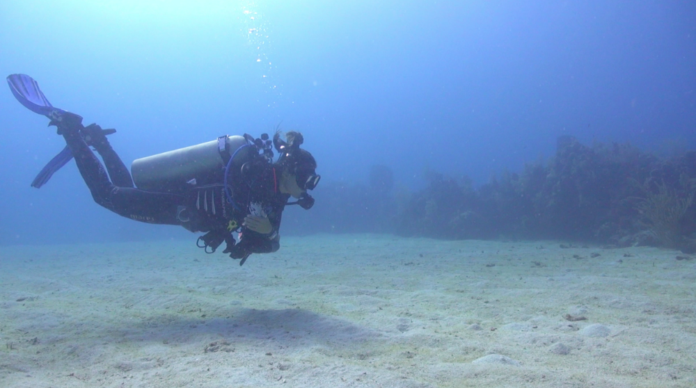 Check out Roatan Divers' instructor, Eri, demonstrating her mad buoyancy skills!