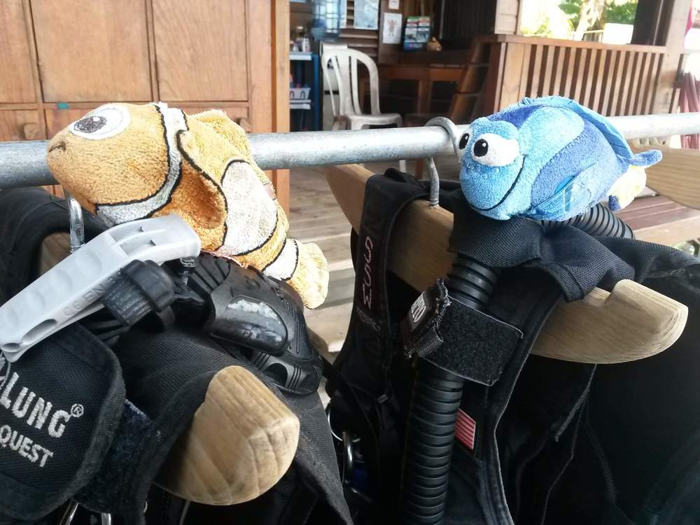 Always dive with a buddy!