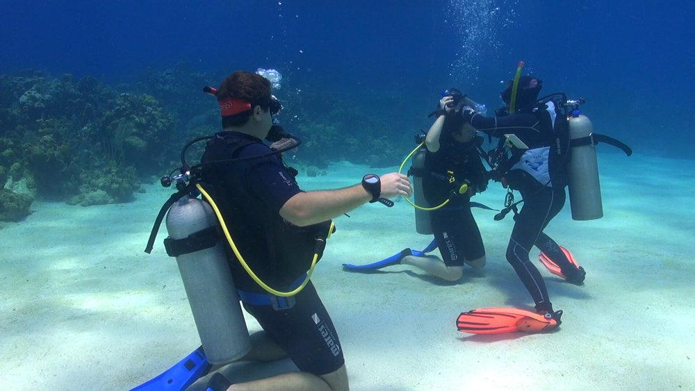 Roatan Divers PADI OWSI IDC