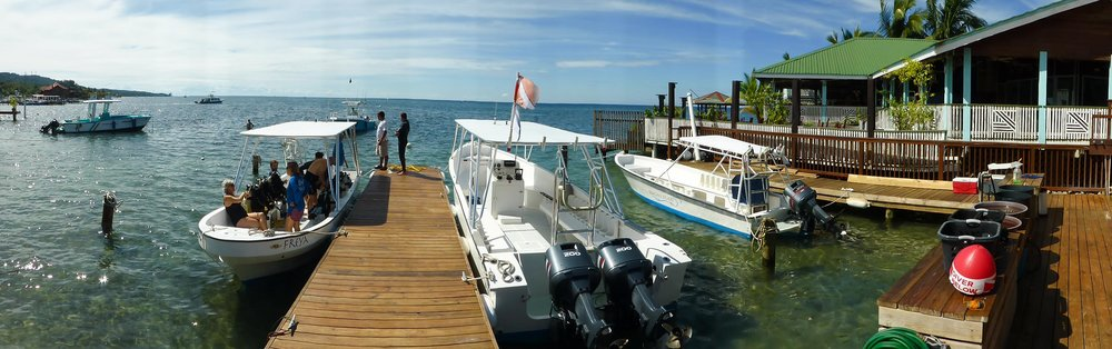 Roatan Divers boats