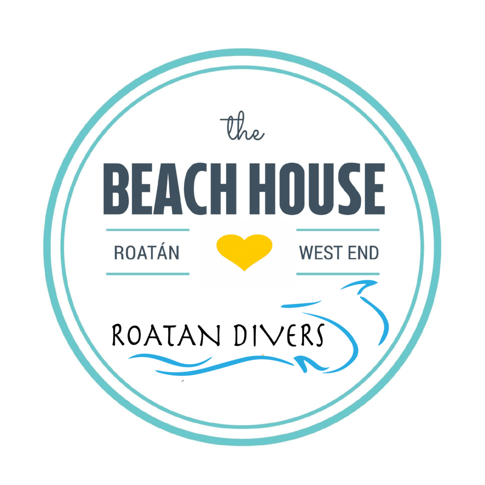 Roatan Divers Beach House