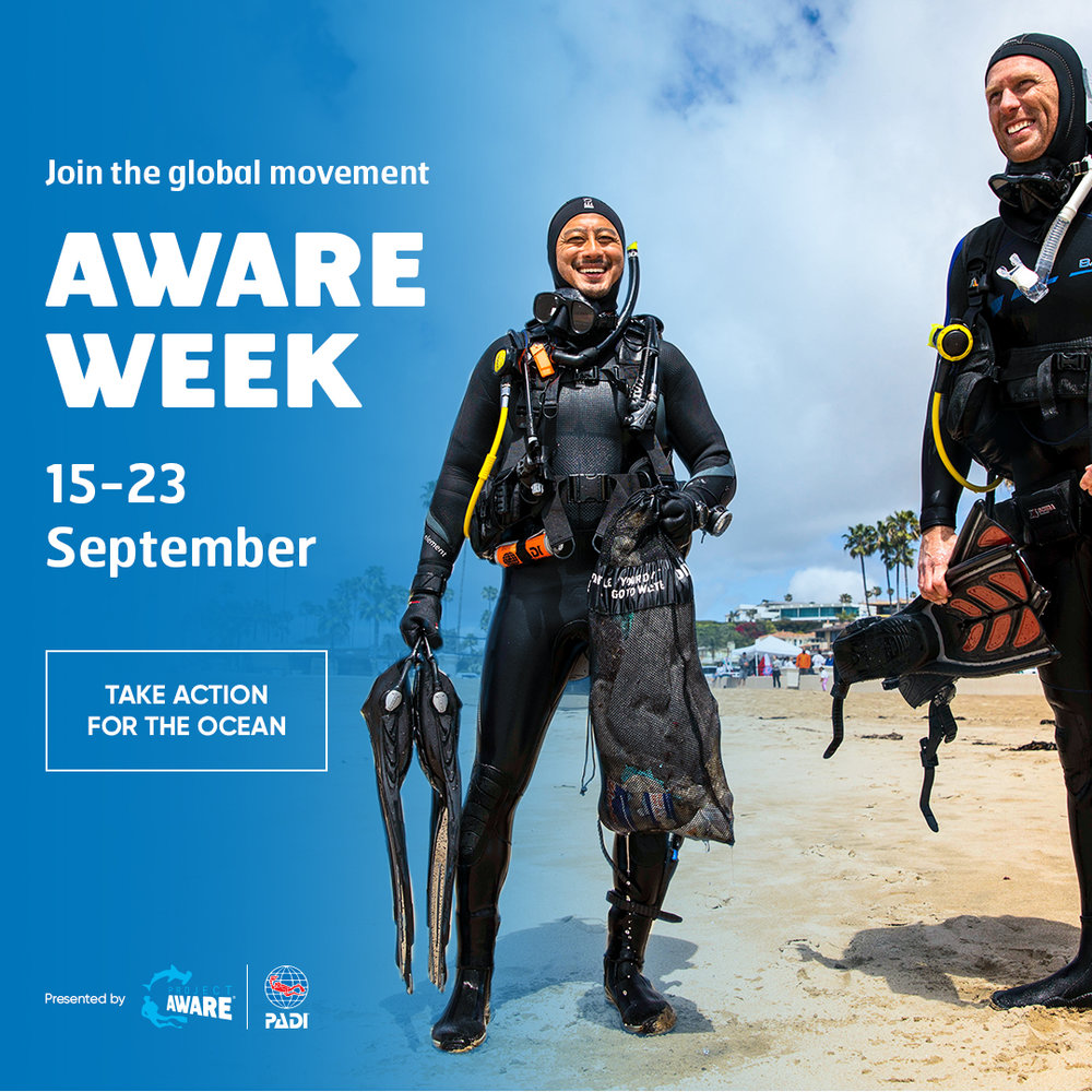 PADI Project AWARE Roatan Divers