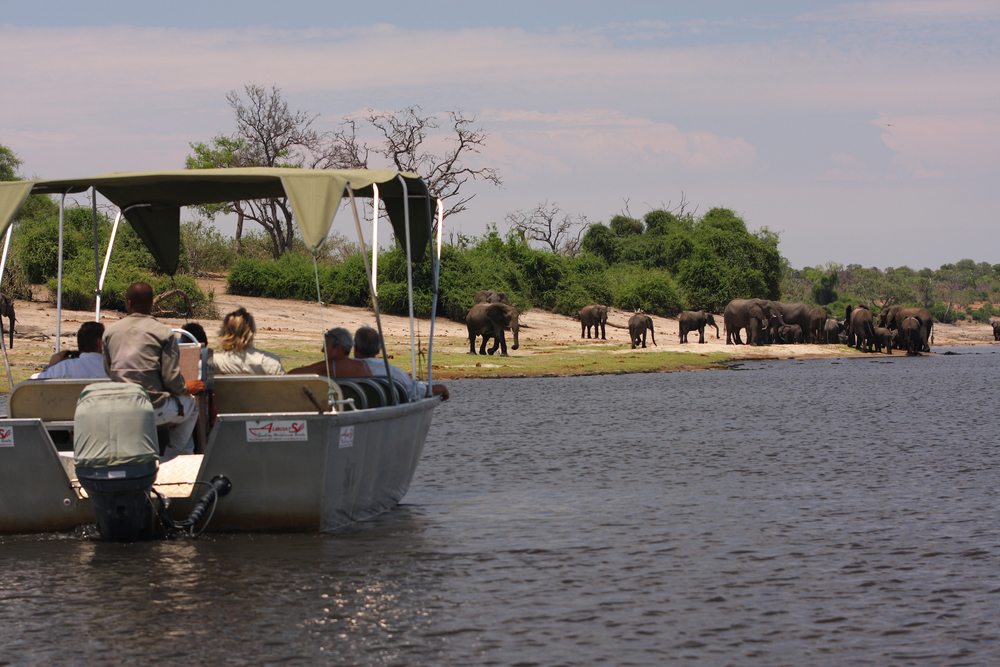 Elephant-Valley-Lodge-Chobe-Boat-Cruise-2.jpg