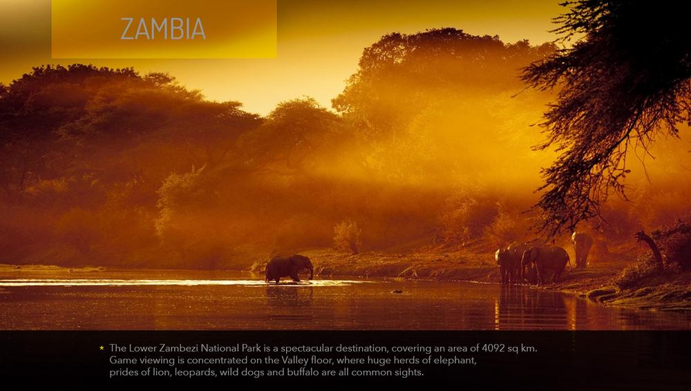 Safari_Zambia_1.jpg