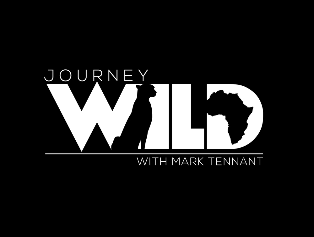 JourneyWildLogo.jpg