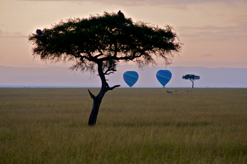 balloon-safaris-masai-mara_6075394695_o.jpg