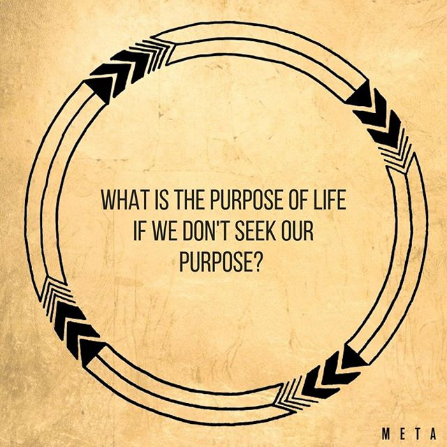 What is the purpose of life if we don't seek our purpose? ⠀⠀⠀⠀⠀⠀⠀⠀⠀ What is your purpose? Choose it. Own it. Nurture it. Live it. Share it. ⠀⠀⠀⠀⠀⠀⠀⠀⠀ ⠀⠀⠀⠀⠀⠀⠀⠀⠀ .⠀⠀⠀⠀⠀⠀⠀⠀⠀ .⠀⠀⠀⠀⠀⠀⠀⠀⠀ .⠀⠀⠀⠀⠀⠀⠀⠀⠀ #Inspire #love #motivation #inspiration #success #life #goals #quotes #lifestyle #happy #innerbeauty #smile #create #play #chooselove #chooselife #mindset #body #dance #positivevibes #happiness #motivational #positivity #balance #peace #connect #connection #aspiration #wild #wildness