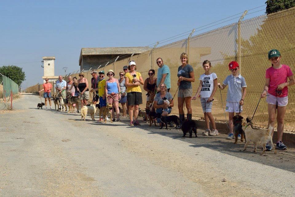 ¡Nuestro maravilloso equipo de voluntarios paseando a los perretes!