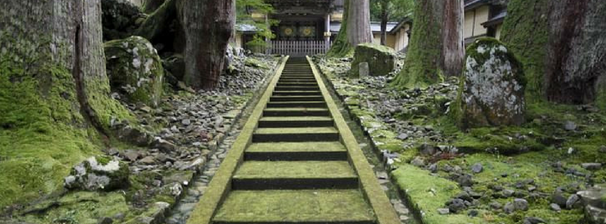 Mossy steps leading up to a temple gate.